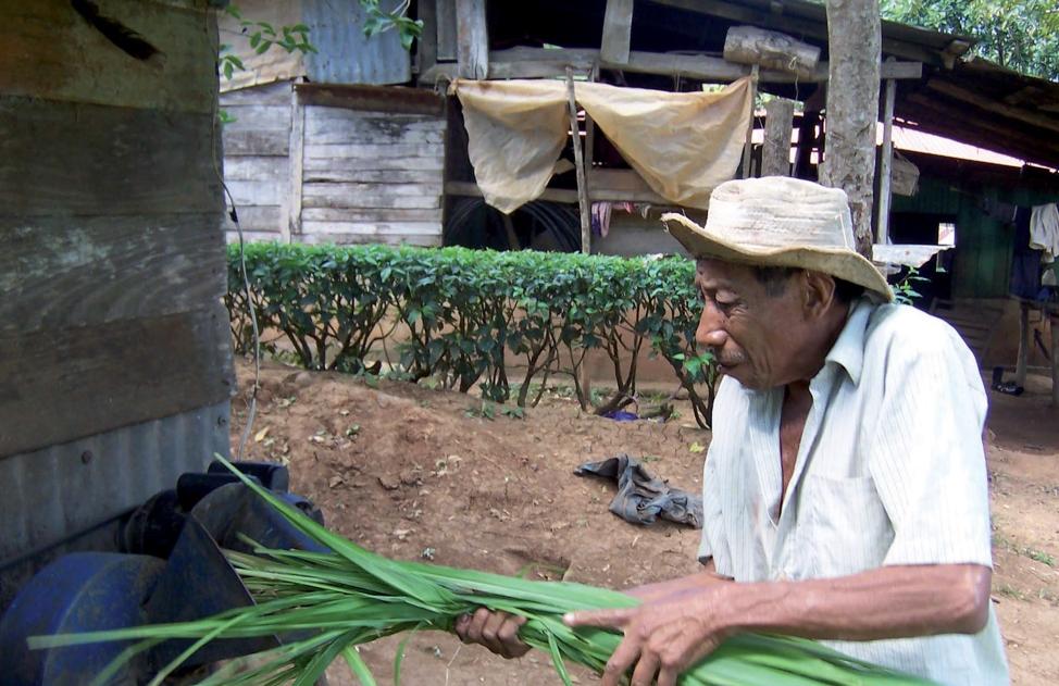 Caso 6: Hacia una ganadería productiva y amigable con el ambiente